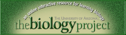 University of AZ Biology Project